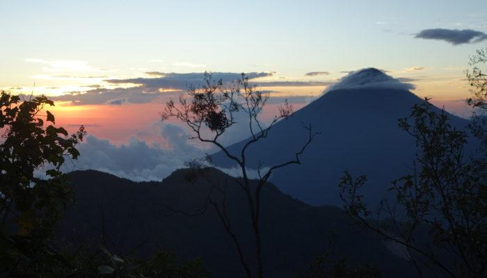 Glorious Green Guatemala