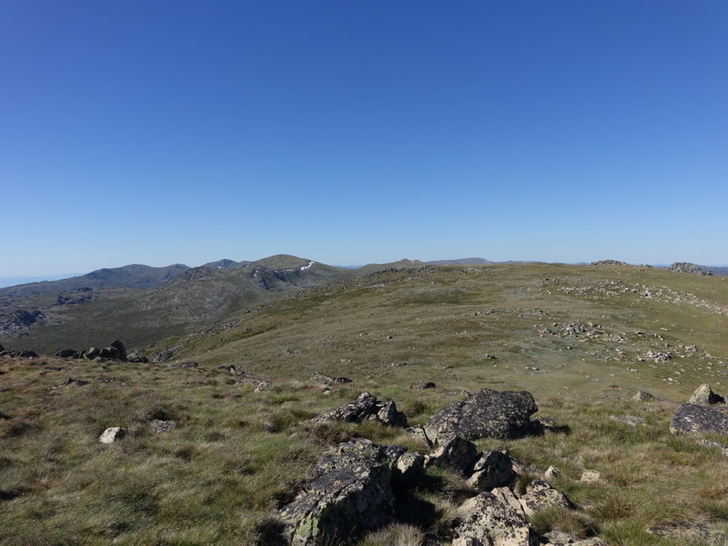 Kosciuszko from near North Ram's Head