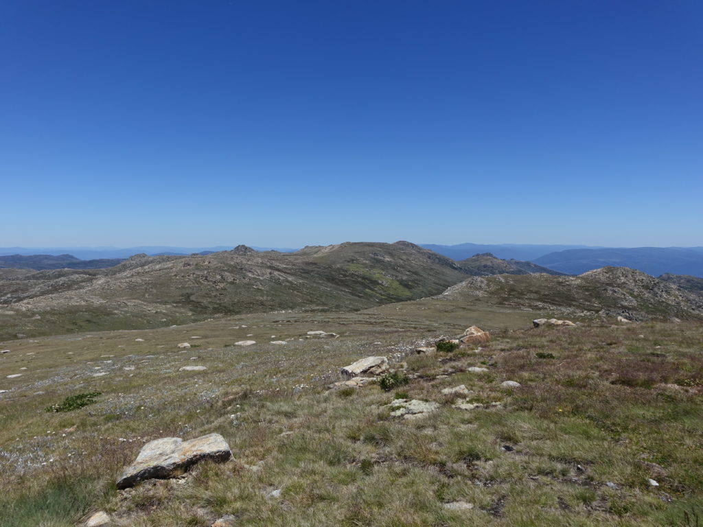 Across to Ram's Head - another of Australia's five highest summits
