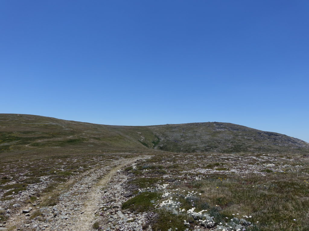 Track on ridge to Mount Twynam