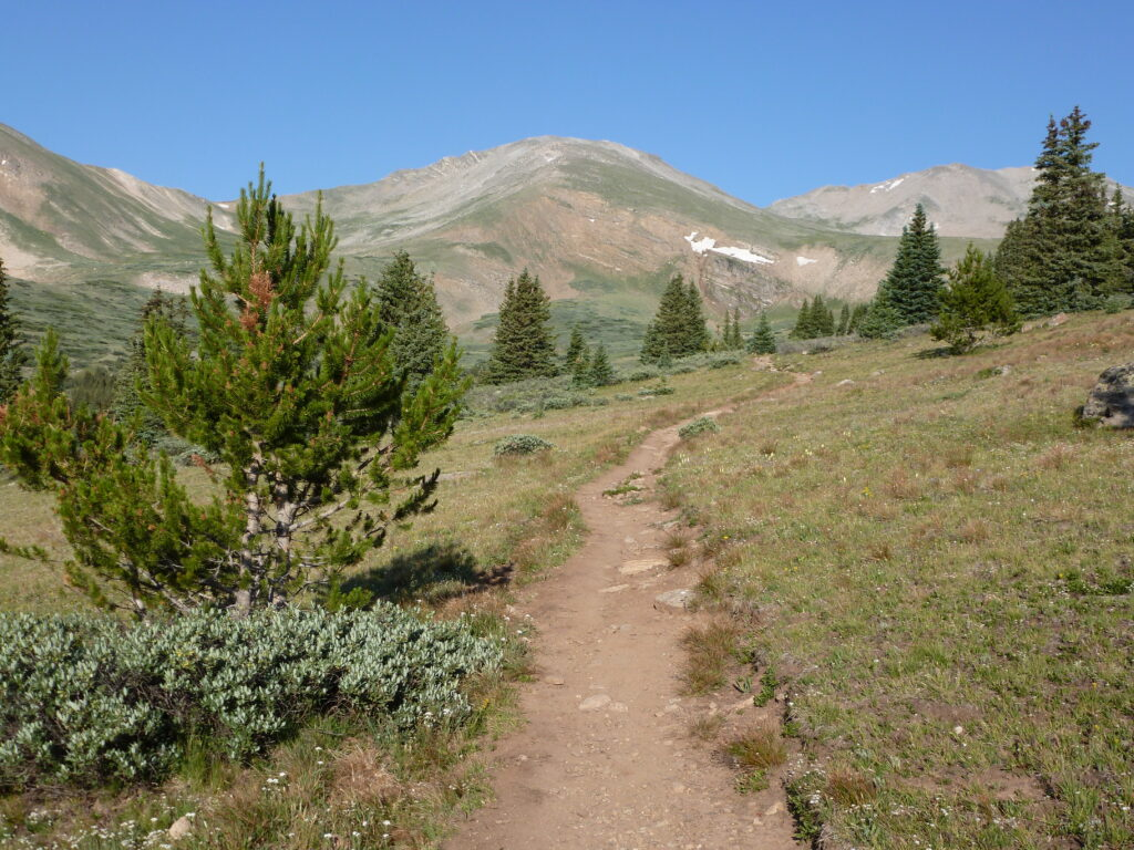 Mount Massive ahead