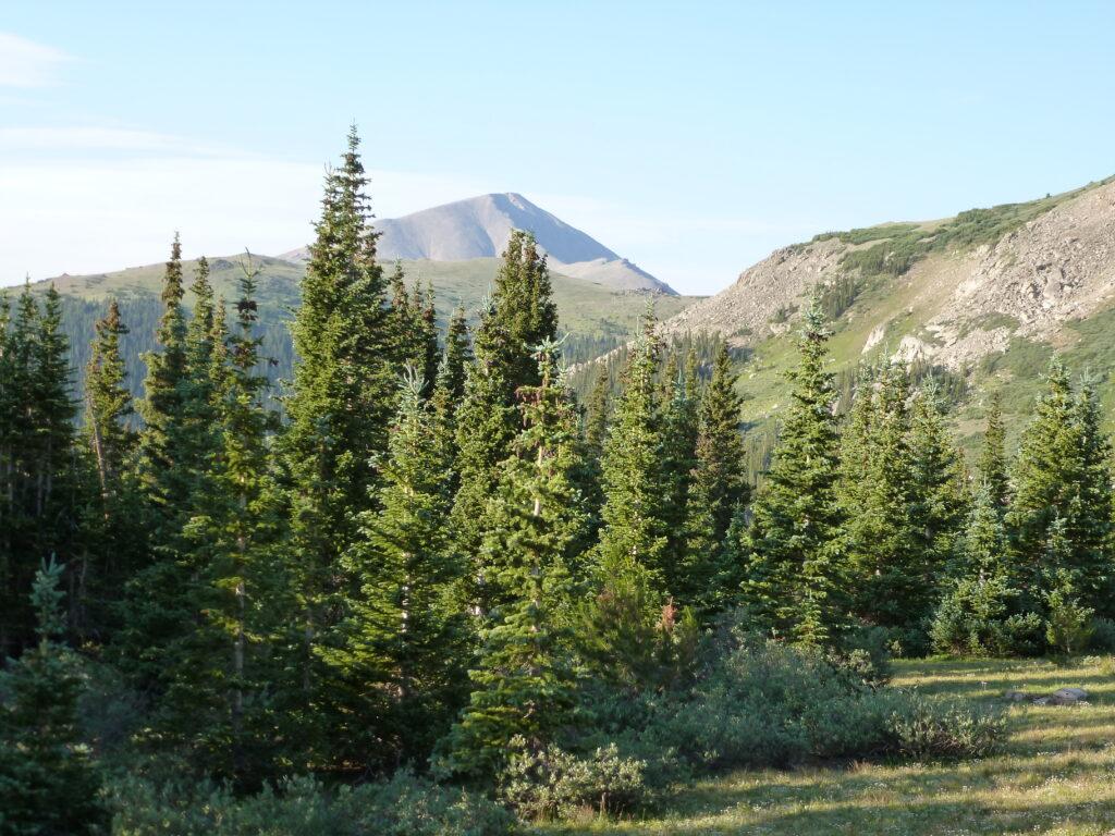 Mount Ebert
