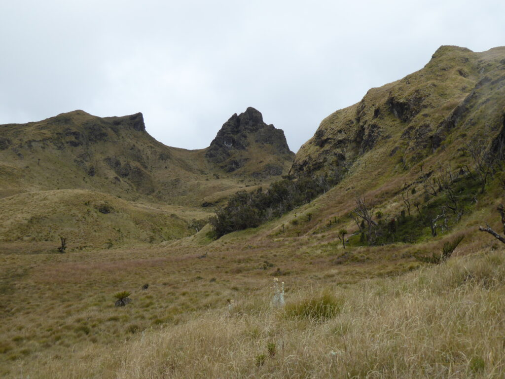 Approaching the plateau on Mount Giluwe
